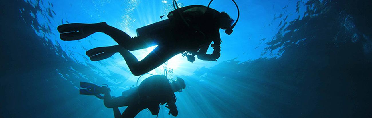 Scuba Diving Packages